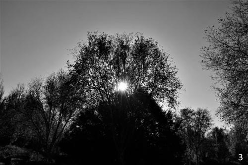 Foto 3 zwart wit